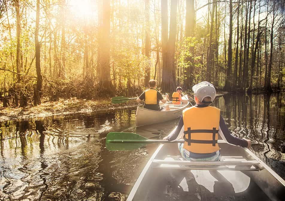 canoeingdownbeautifulriverinacypressforest